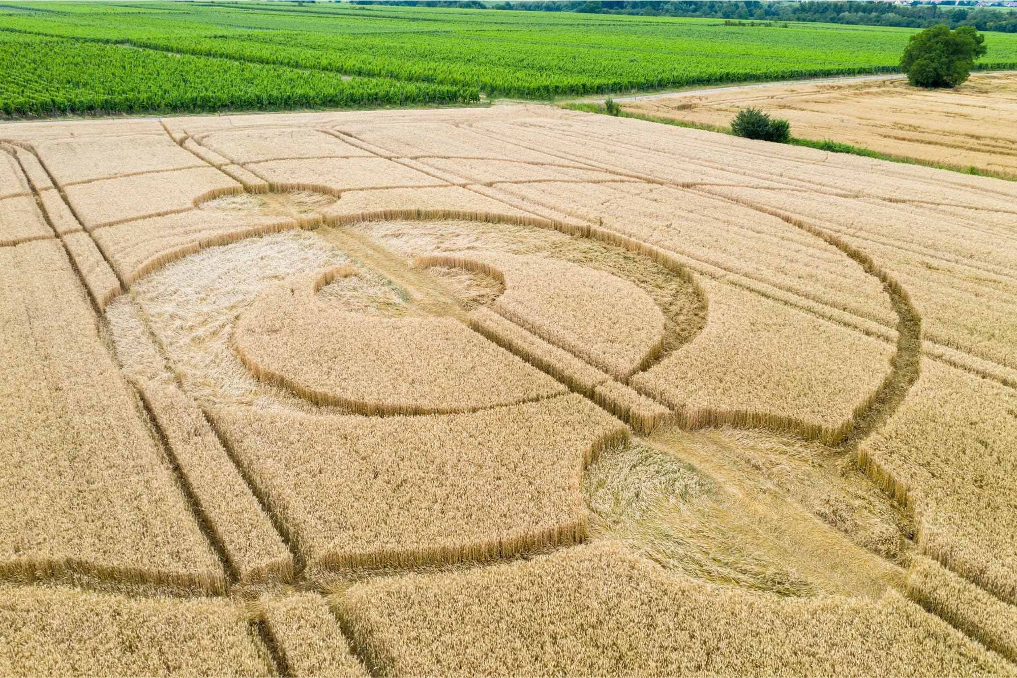 crop circles field Alsace France