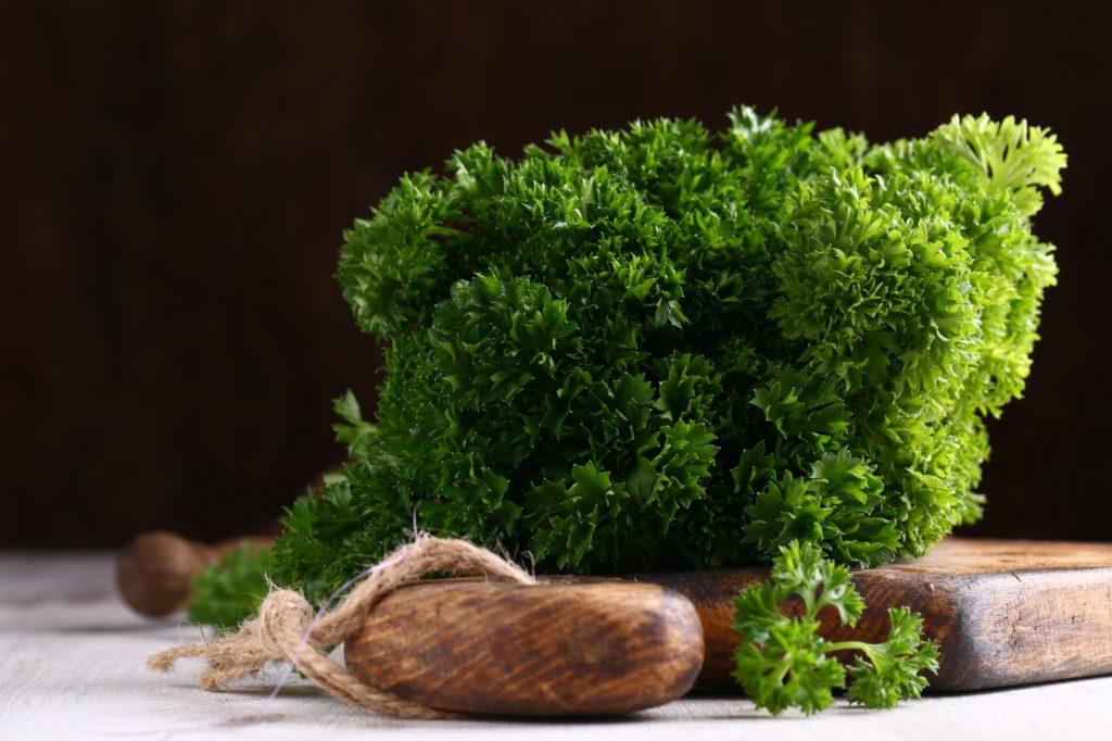 Green Organic Parsley