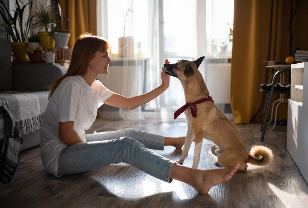 Smiling woman rewarding dog for trick