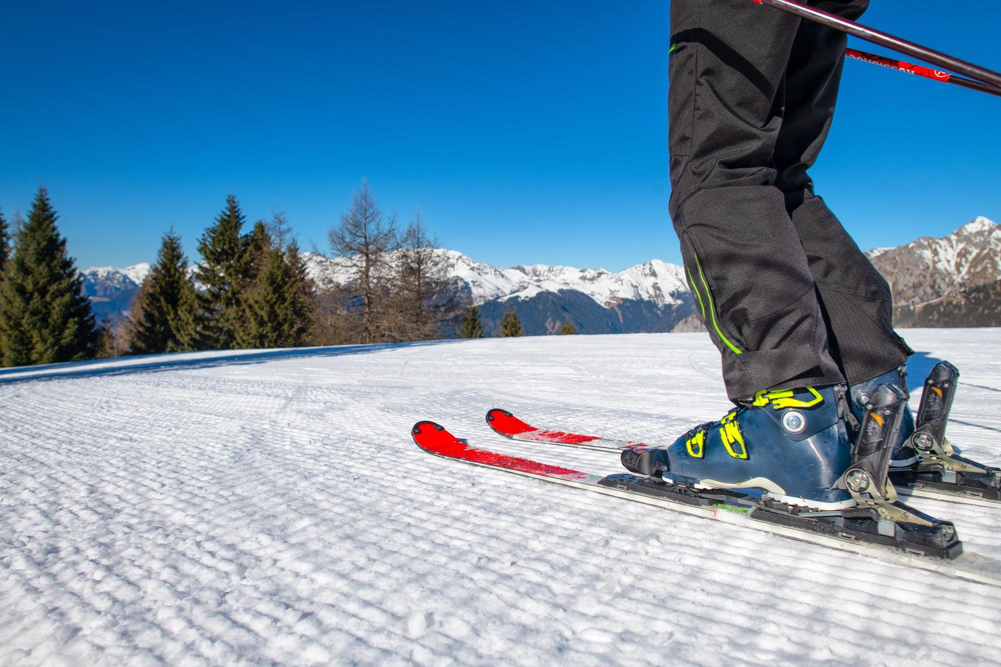 Ski detail on ski