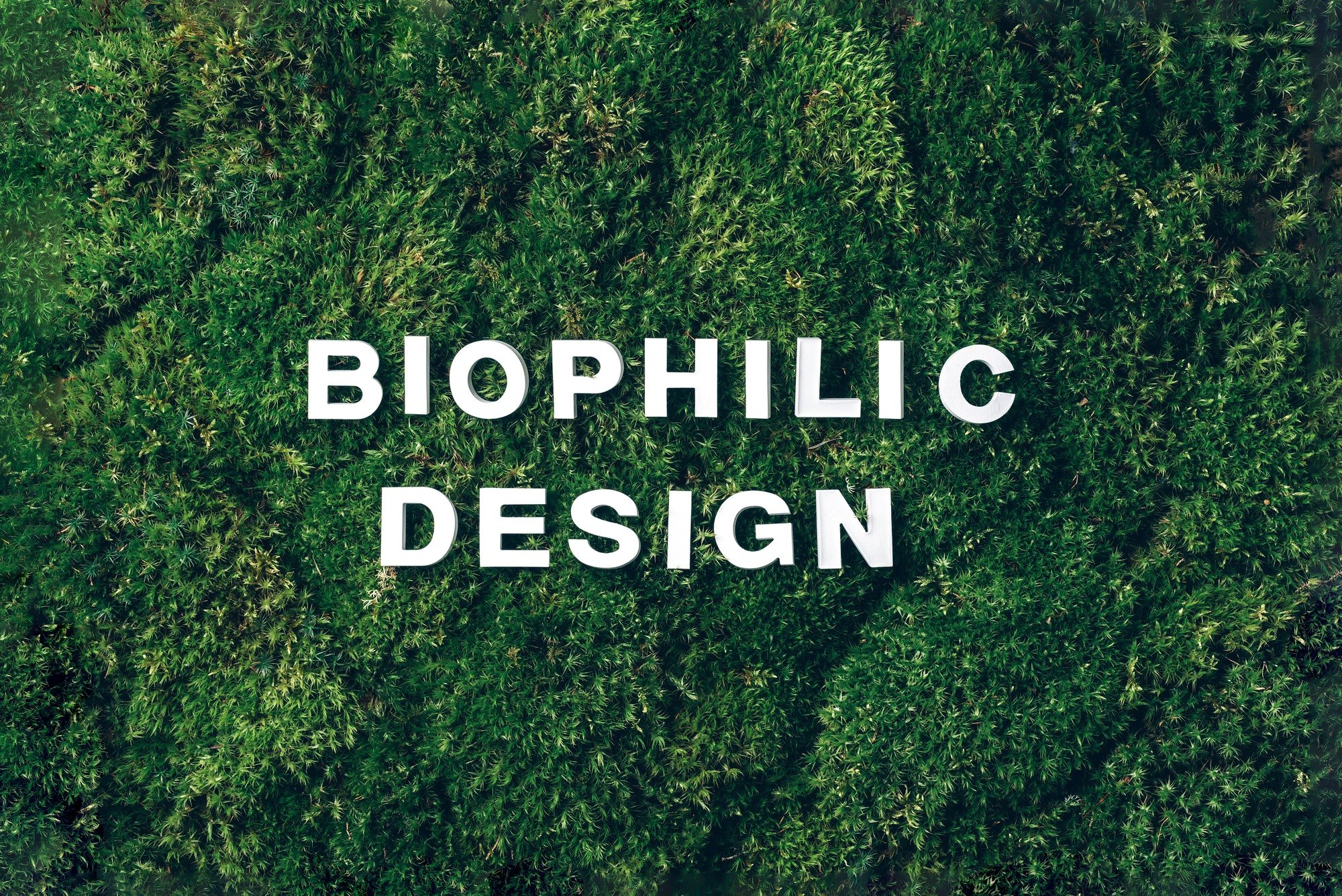 Biophilic design - white letters on green moss, grass background. Top view, copy space. Biophilia